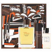 HERMES Terre d'Hermes Eau Intense Vetiver men set (100ml edp + 80ml sh/gel + 40ml a/sh lotion) NEW