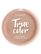 Divage Пудра Компактная True Color № 05